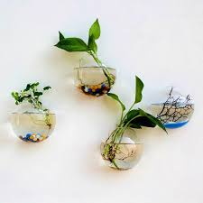 hanging plant flower glass ball vase terrarium wall fish tank