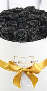 black roses delivery black roses luxury flower delivery in sydney order now your