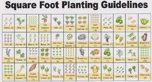 garden amusing planning a garden layout garden planner free bbc