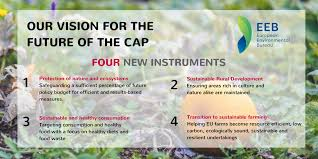 environmental bureau 4 instruments 1 pillar a move to food the eeb cap position