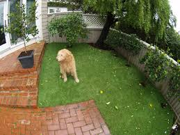 Astro Turf Backyard Triyae Com U003d Turf Backyard Dogs Various Design Inspiration For