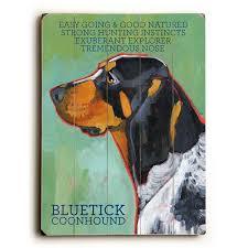bluetick coonhound gifts 319 best bluetick coonhound images on pinterest bluetick