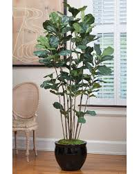 shop unique styles and varieties of high quality silk trees at