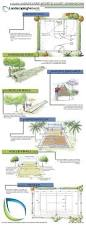 Backyard Chickens For Beginners by Outdoor Basketball Court Dimensions Half Backyard Decorations By