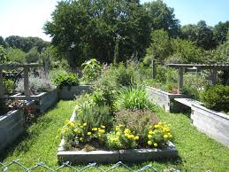Gifts For Vegetable Gardeners by Garden Gift Ideas For Spring U0026 Summer Motivators