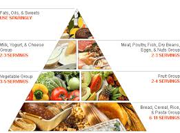 weight loss program articles the healthy eating pyramid