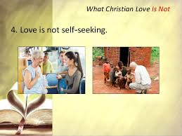 Seeking Not Cfc Sfc Clp Talk No 6 Loving Your