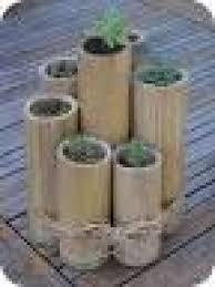 bauen mit bambus in der schweiz