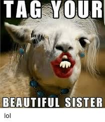 Sister Memes Funny - tag your beautiful sister lol beautiful meme on me me