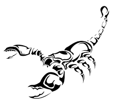 scorpio zodiac sign designs design scorpio