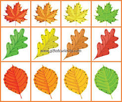 fall leaf lacing cards free printable gift of curiosity