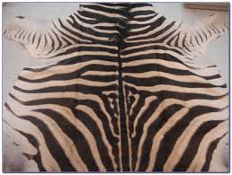 Rug Ikea by Zebra Skin Rug Ikea Rugs Home Design Ideas Yonroe8m8q56249