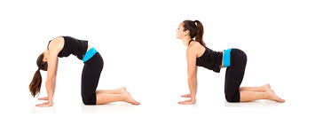 Is It Good To Exercise Before Bed 7 Ways To Improve Your Core Workout Shape Magazine