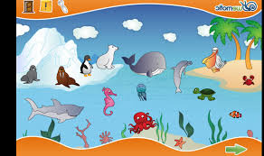 sea creatures for kids pictures on animal picture society