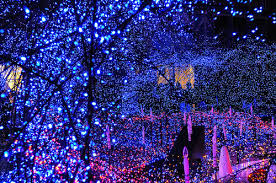 blue christmas lights blue christmas christmas lights decorations holidays