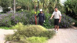 South Florida Landscaping Ideas Garden Ideas Florida Garden Plants Flagstone Patio Cheap Garden