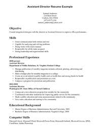 resume templates exles of resumes resume professional skills exles templateskills resume