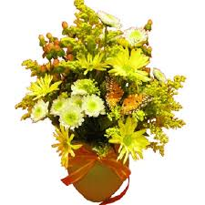 florist tulsa ok tulsa florist flower delivery by ladybug s flowers and gifts inc
