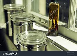 Kitchen Canisters Online Compare Prices On Stainless Steel Kitchen Containers Online
