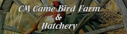 bird farm bird hatchery breeders and suppliers of
