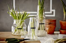 ikea vasi vetro trasparente vasi giardino ikea vasi grandi da giardino ikea lanterne with