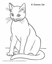cat coloring pages images cat coloring pages printable siamese cat coloring page honkingdonkey