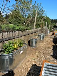 water trough planter galvanized water tanks as planters u2013 blueberry hill crafting