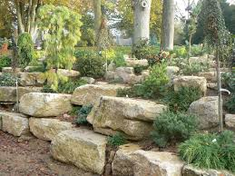 250 best rockeries images on pinterest gardens plants and dry