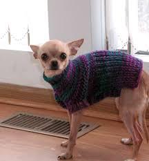 chihuahua knit sweater sweater