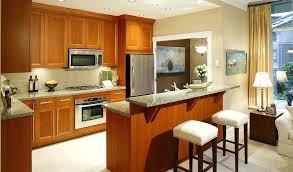 galley kitchen layouts ideas small galley kitchen design layout ideas cabinet amazing stunning