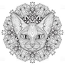 coloring book for adults the head of a mysterious cat with a