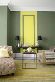 Wall Paint Colours 22 Best Paints Feature Wall Images On Pinterest Feature Walls