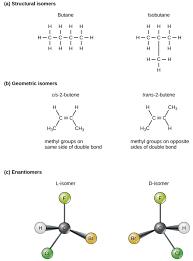carbon boundless biology