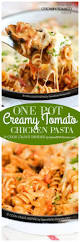 one pot pasta with creamy tomato sauce