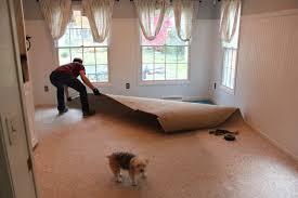 Laminate Flooring Filler The Fat Hydrangea Spontaneous Weekend Transformation Inspired