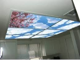 Cover Fluorescent Ceiling Lights Fluorescent Lighting Replacement Fluorescent Light Covers For