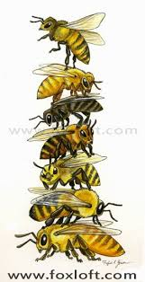 best 25 bee art ideas on pinterest bee painting bee and bee