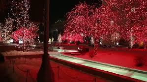 families enjoying beautiful christmas lights on temple square