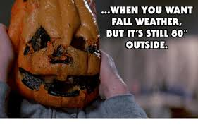 Fall Memes - when you want fall weather ibut it s still 60 outside fall meme