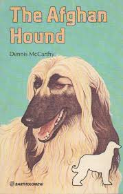 afghan hound job the afghan hound pet care guides dennis mccarthy 9780702810541