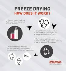 design freeze meaning how to freeze dry food instructions and best methods