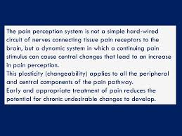 hard wired pathway palliative care and pain ppt download