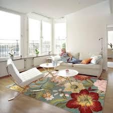 jcpenney rugs area roselawnlutheran