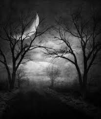 horror moon forest macabre ldarknessl