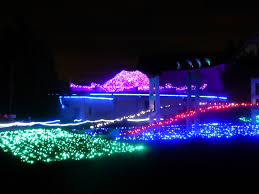 Zoo Lights Seattle by Birthday Leisure Time Point Defiance Zoo Clam Lights Holidays