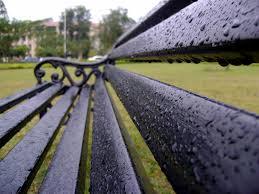 park bench on a rainy day how it all started satyadeep k