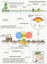 permaculture garden layout transitioning to a permaculture market garden growing for market