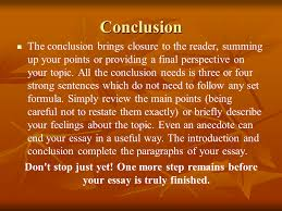 Guide to Writing a Basic Essay  Sample Essay