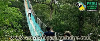 canopy amazon peru tambopata rainforest canopy zip lining peru travel manu