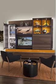 Entertainment Living Room Living Room Entertainment Center Ideas Living Room Built In